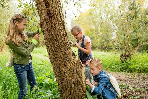 6e Scouting Ferguson Natuurspeurtochten en Wandelevenement